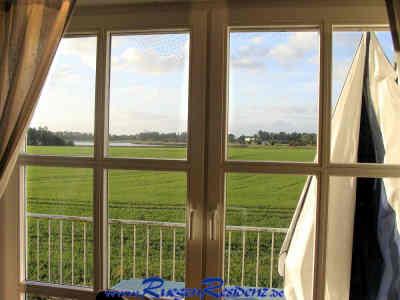 Blick aus der FeWo über die Felder auf den Rügischen Bodden