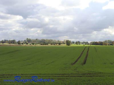 Blick von der Terrasse über die benachbarten Wiesen und Felder