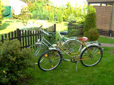 Ihnen stehen kostenlos zwei Fahrräder zur Verfügung
