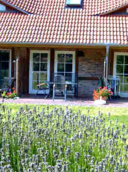 Lavendelbl�te vor einer Terrasse des Gutshauses Losentitz/R�gen