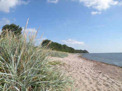 Ein Strand auf Zudar / S�d-R�gen