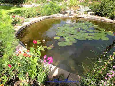 Auf dem sehr gro�en Gartengel�nde findet sich auch eine Teichanlage